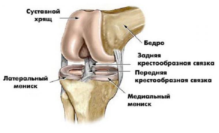 Кто сломал коленный сустав лазер для физиолечения суставов в домашних условиях